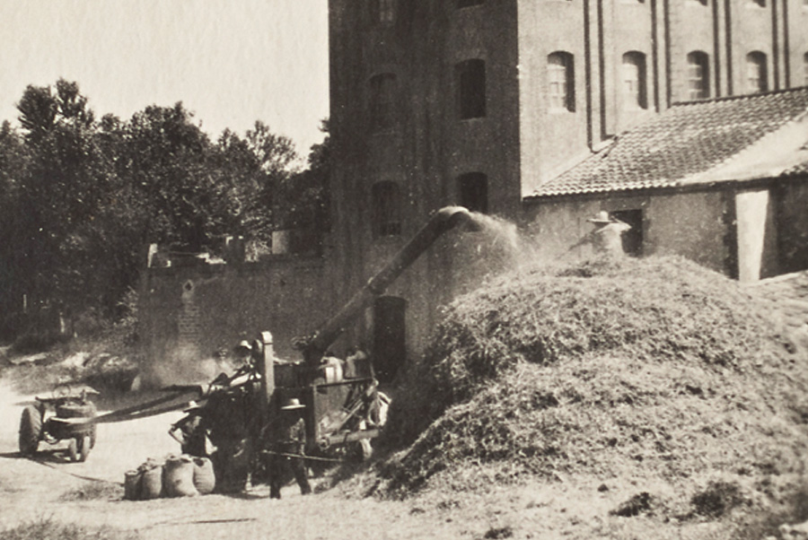 Farmers working outside the flour mill